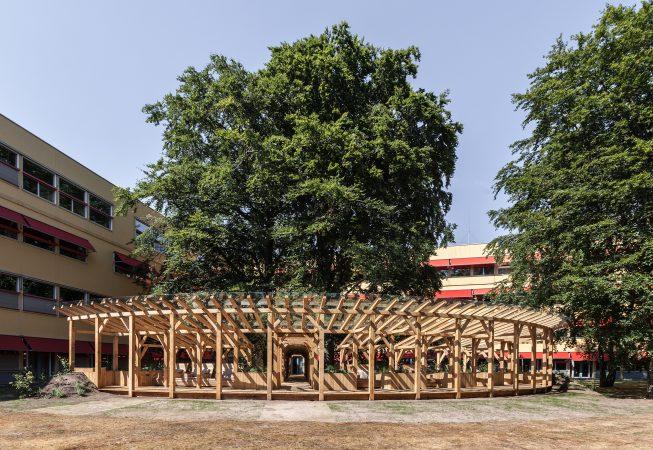 Overzicht van het paviljoen met een looppad tussen de twee monumentale beukenbomen