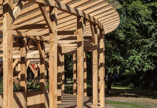 Het paviljoen waaiert in vorm uit in de radius van de twee boomkruinen van beide beukenbomen